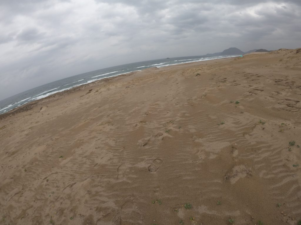 12月に入って、すっかり冬景色になっていた鳥取砂丘