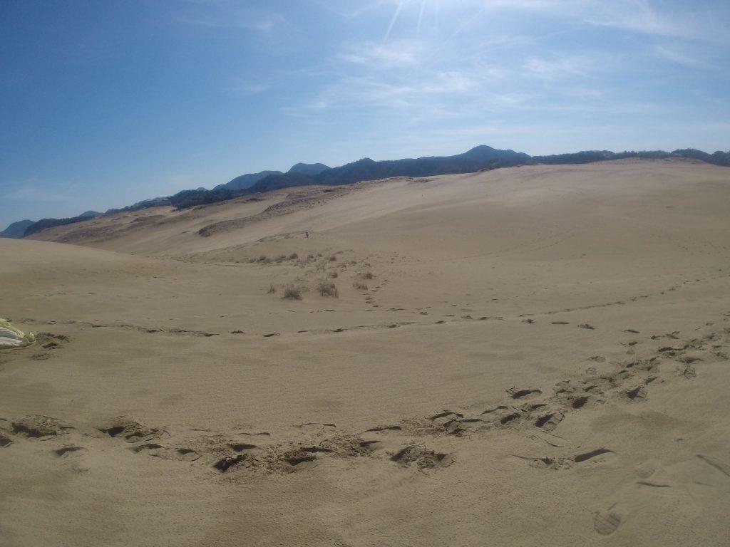 久しぶりに嬉しい晴れ間が広がった鳥取砂丘