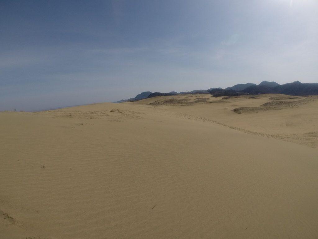 午前中はフライト日和だった鳥取砂丘