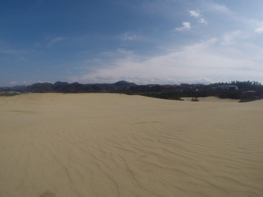 春一番が吹き荒れた鳥取砂丘