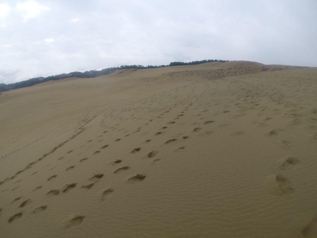 やがて低い雲がきて降りだした鳥取砂丘