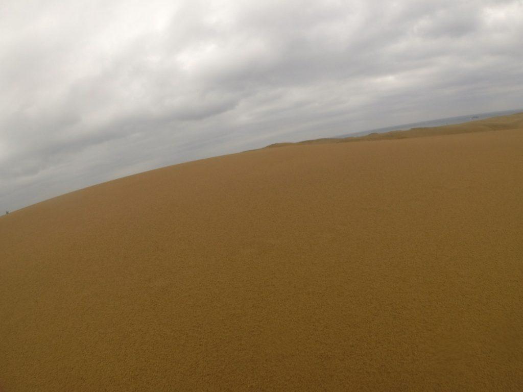 今朝までの雨で、足跡や風紋が消えて表面がのっぺりした鳥取砂丘