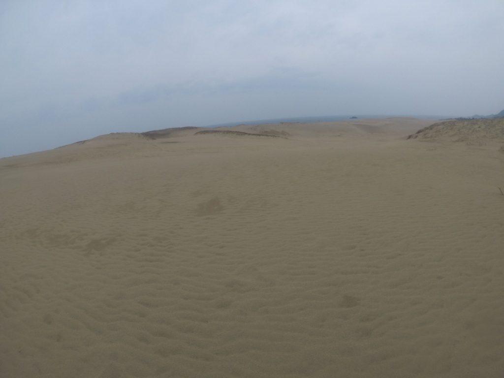 今にも降りだしそうな空模様の鳥取砂丘