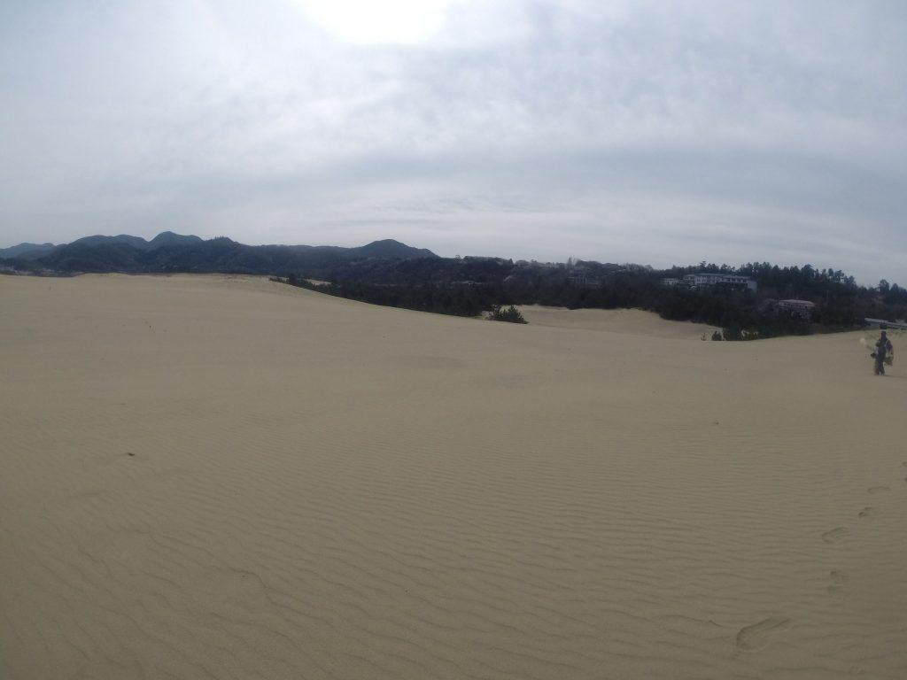 風紋鮮やかな鳥取砂丘