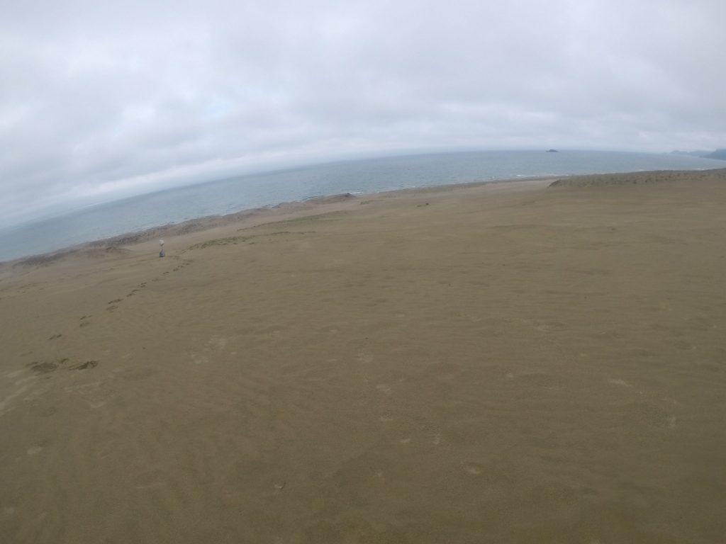 雨が上がったばかりでしっとりしていた鳥取砂丘