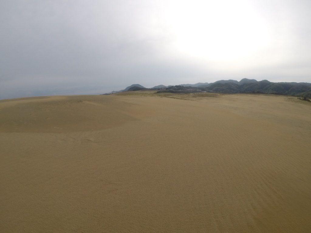 キーンと冬みたいに冷えた朝だった鳥取砂丘