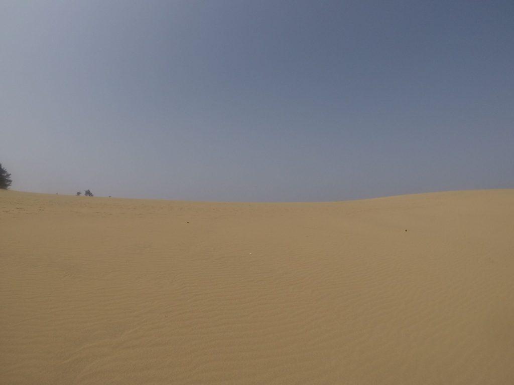 うっすら視界に靄がかかっている鳥取砂丘