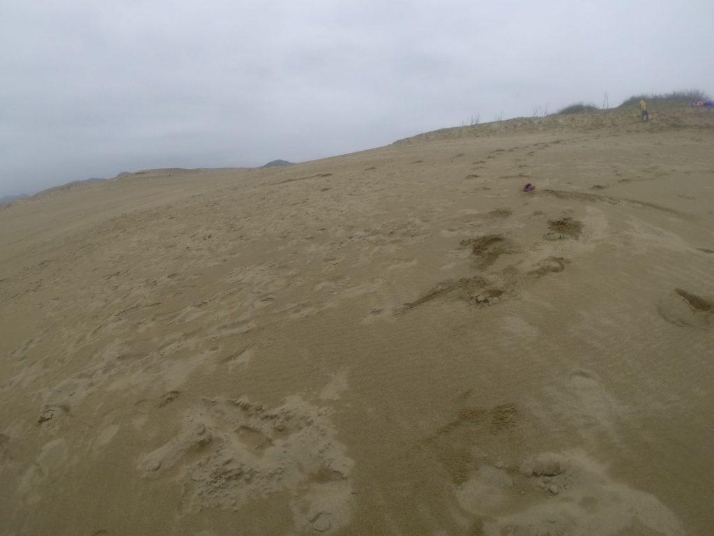 しっとり落ち着いた雰囲気の鳥取砂丘