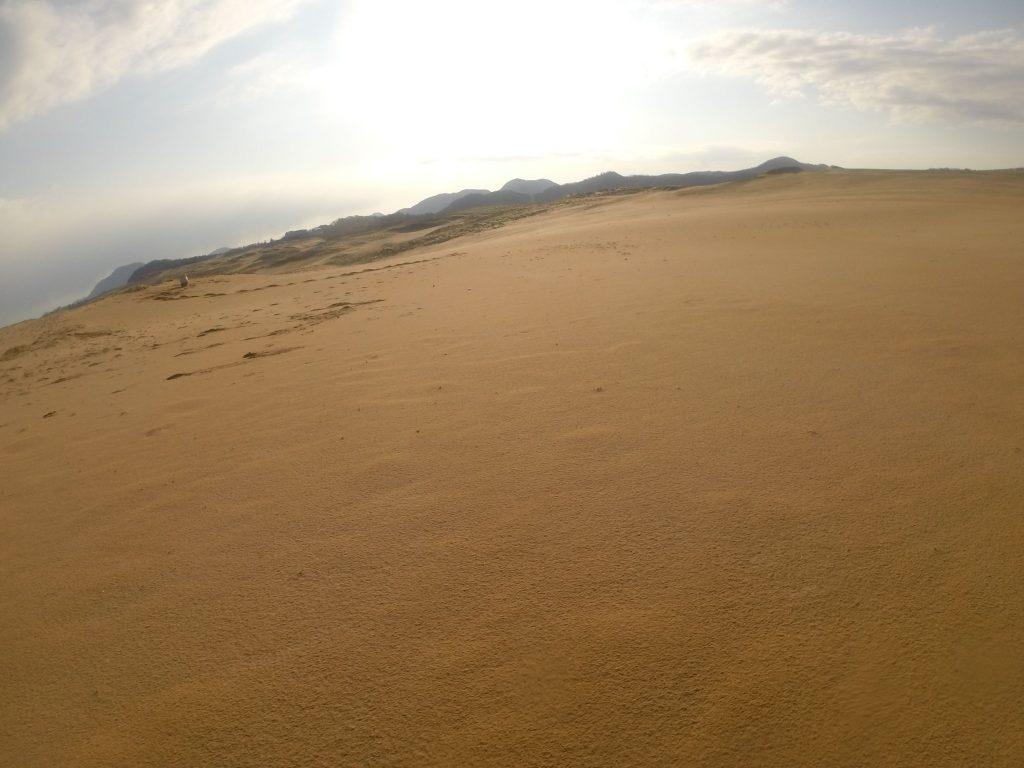 朝は太陽がしっかり顔をだしていた鳥取砂丘