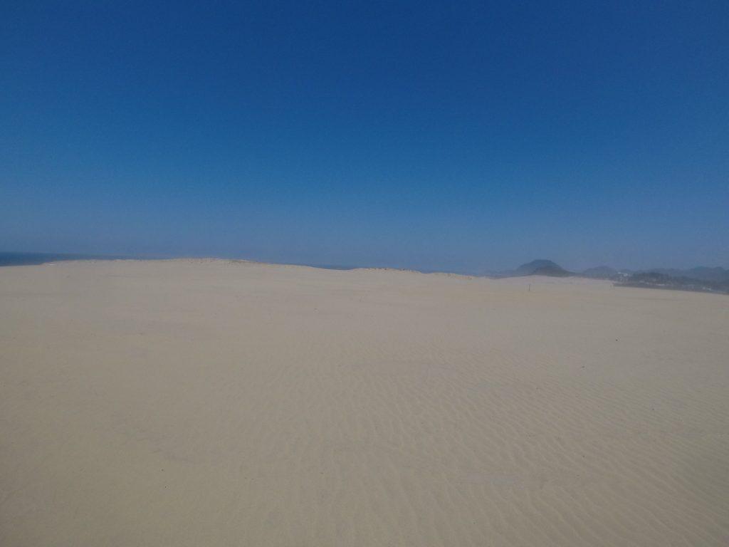 砂が舞い、ぼやッと視界が霞んできた鳥取砂丘