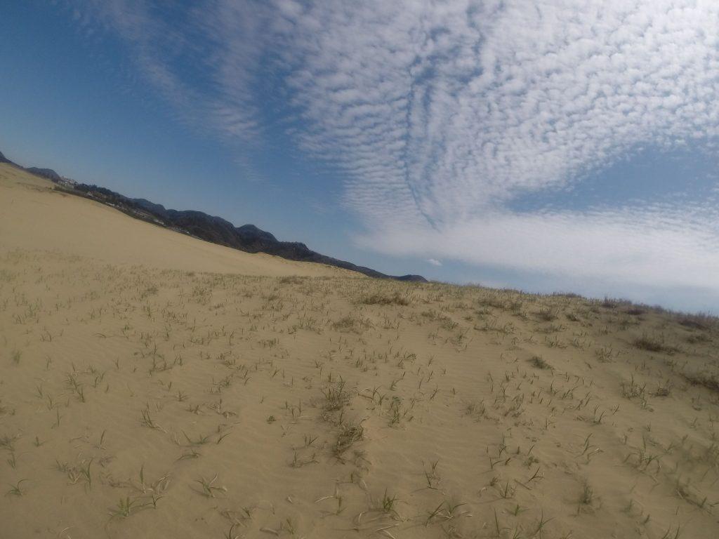 綺麗な青空がうんと楽しめた鳥取砂丘