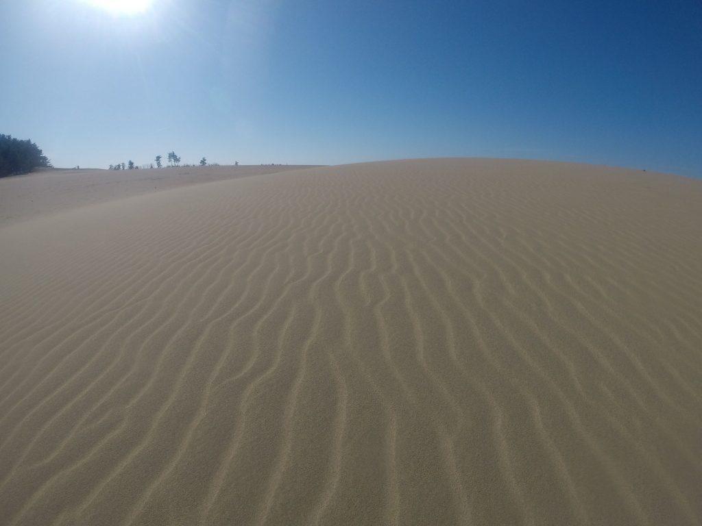 ポストカードのような美しい風景の鳥取砂丘