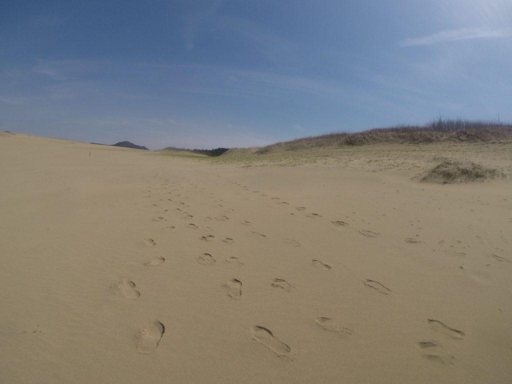 平和な雰囲気に包まれた鳥取砂丘
