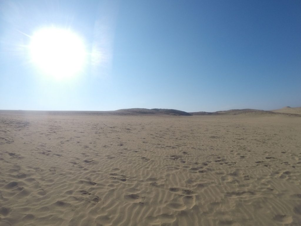 冷たい風が吹き抜けた鳥取砂丘