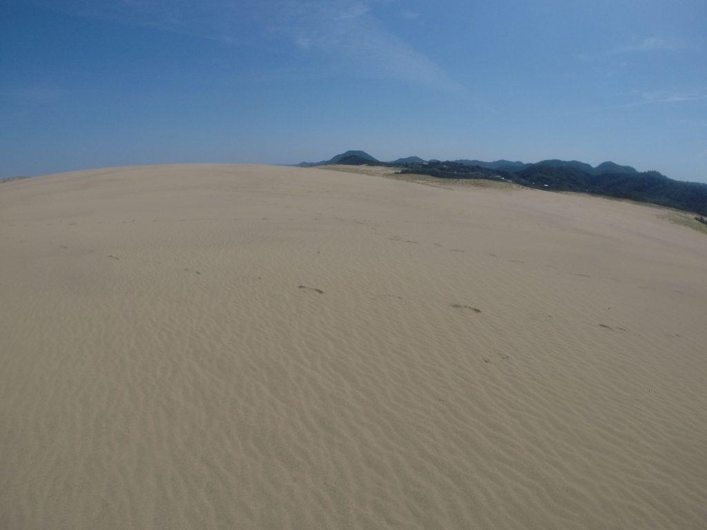 朝はやっぱり暑かった鳥取砂丘