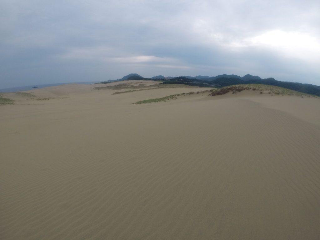 足跡がおおかた消えていた鳥取砂丘の西側