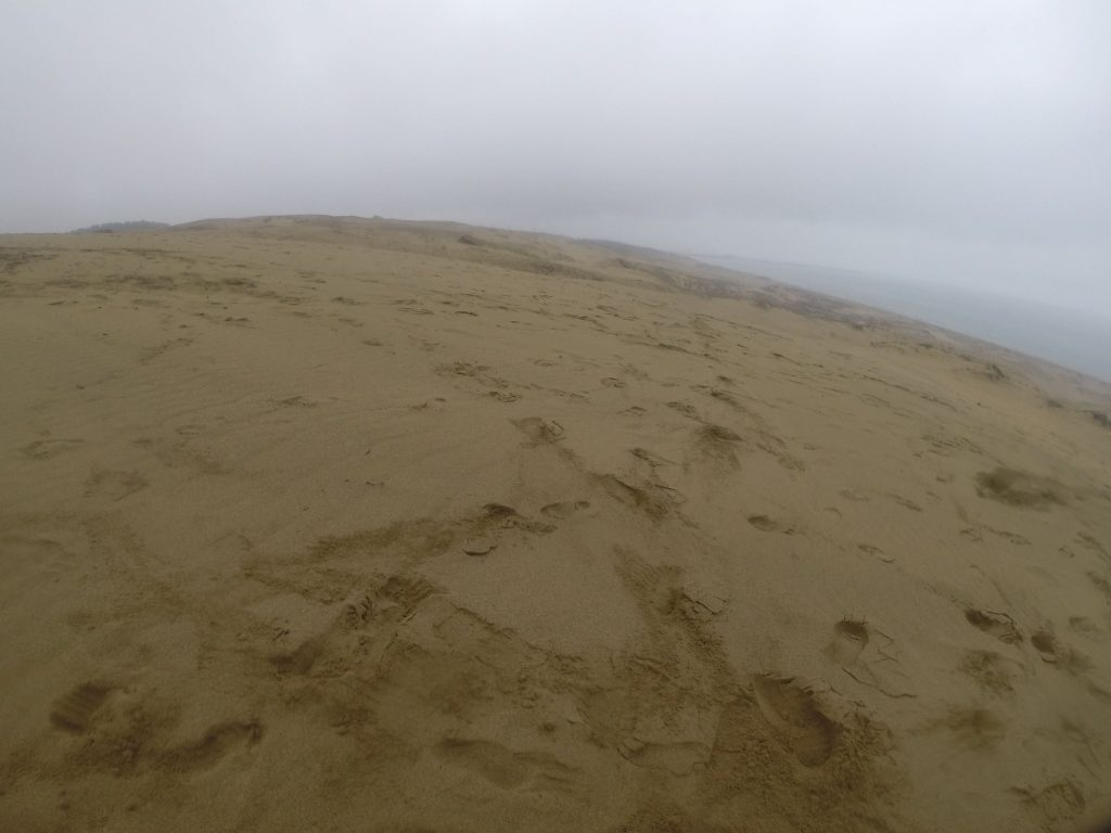 ずっとシトシト降っていた令和元年初日の鳥取砂丘