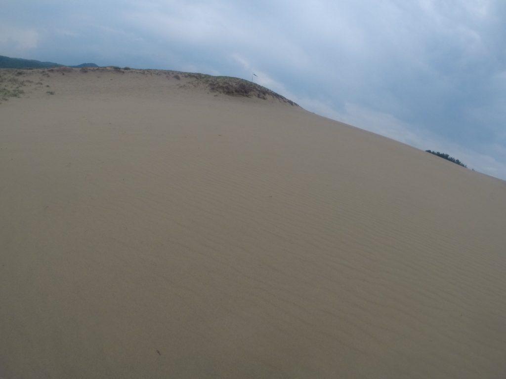 朝まで小雨が降っていた鳥取砂丘