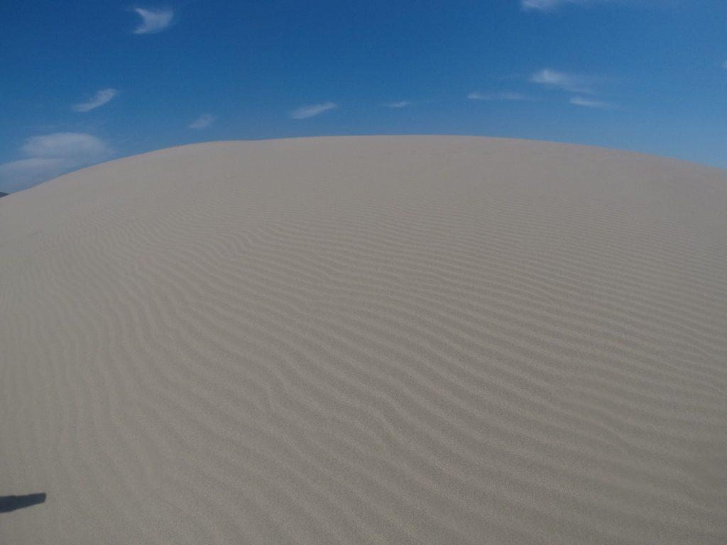 鮮やかな風紋が楽しめる鳥取砂丘