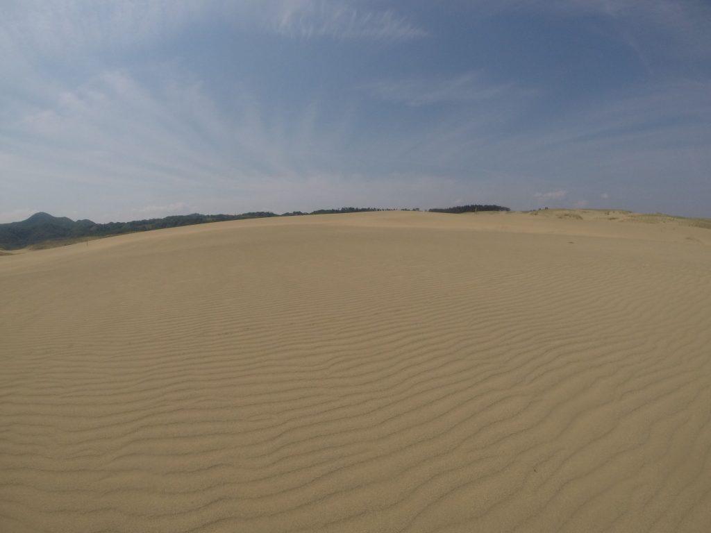 場所によってはみごとな風紋が見られた鳥取砂丘