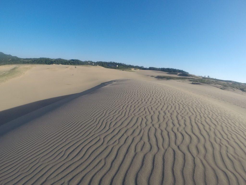 最高に美しい風紋が見られた鳥取砂丘