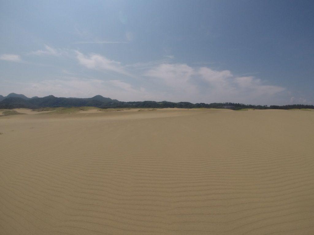 鮮やかな風紋にほれぼれする鳥取砂丘