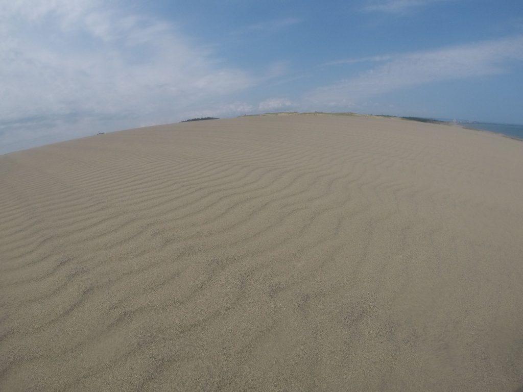 気持ちよく晴れている鳥取砂丘
