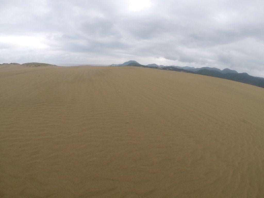 風紋がくっきり現れている鳥取砂丘