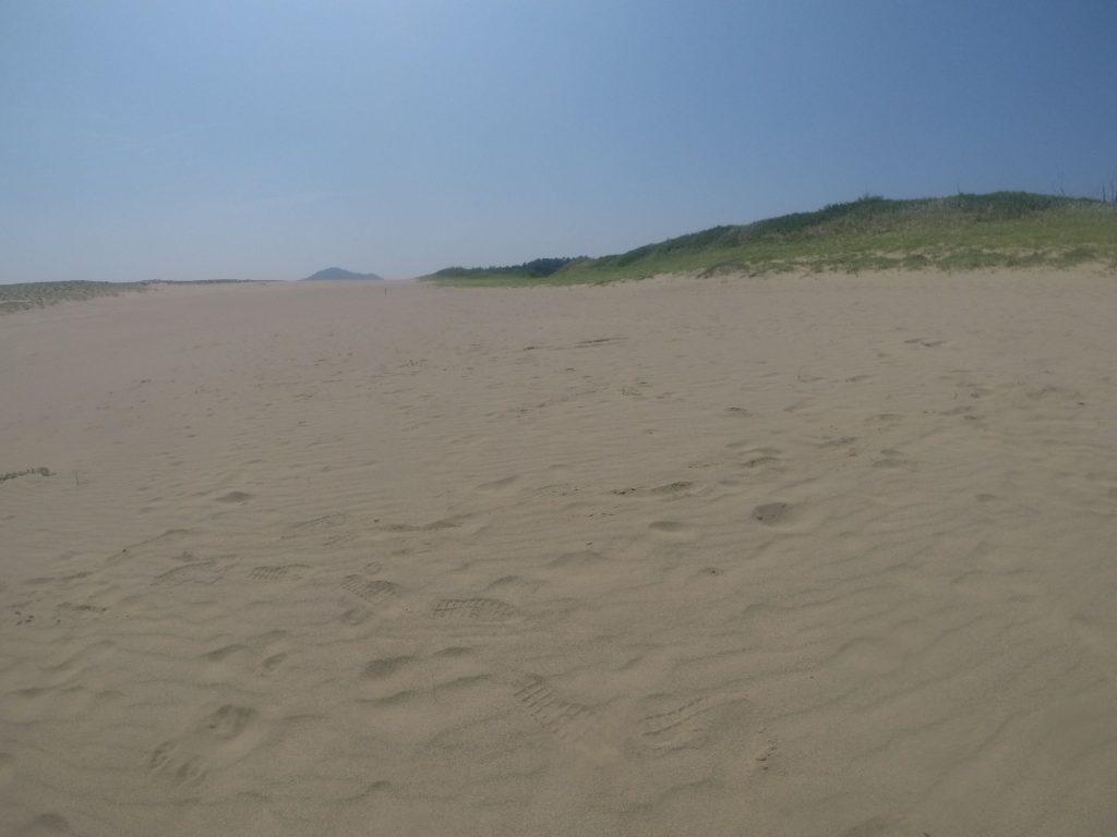 朝からしっかり風が吹いていた鳥取砂丘