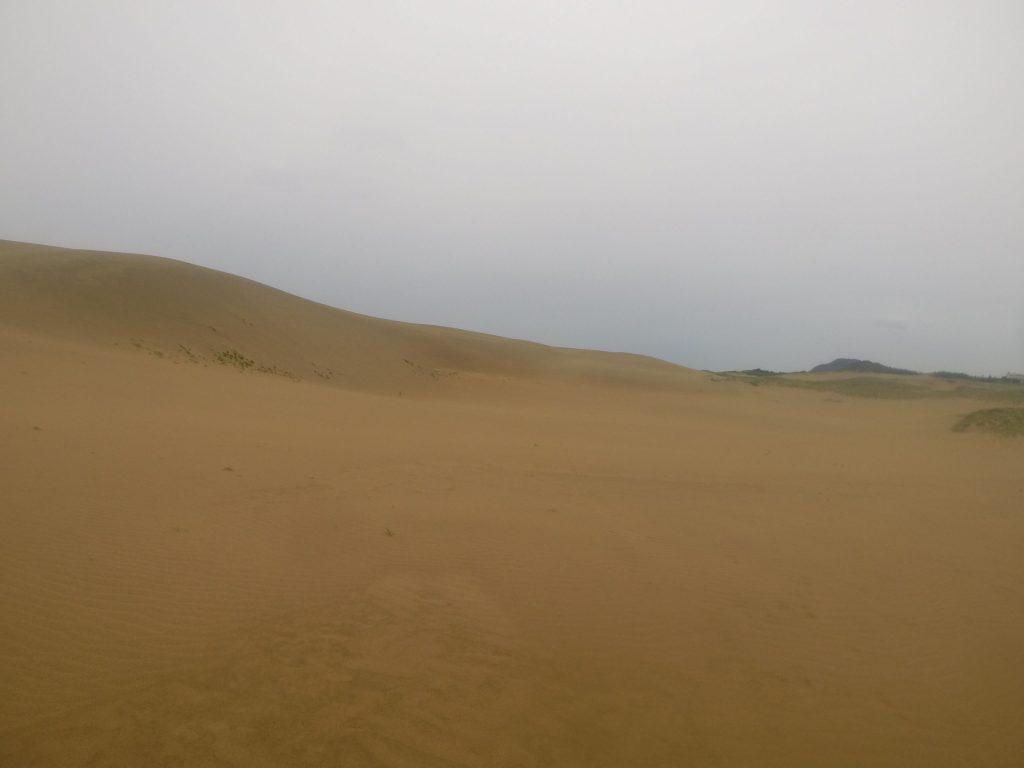 雨でしっとりした朝の鳥取砂丘