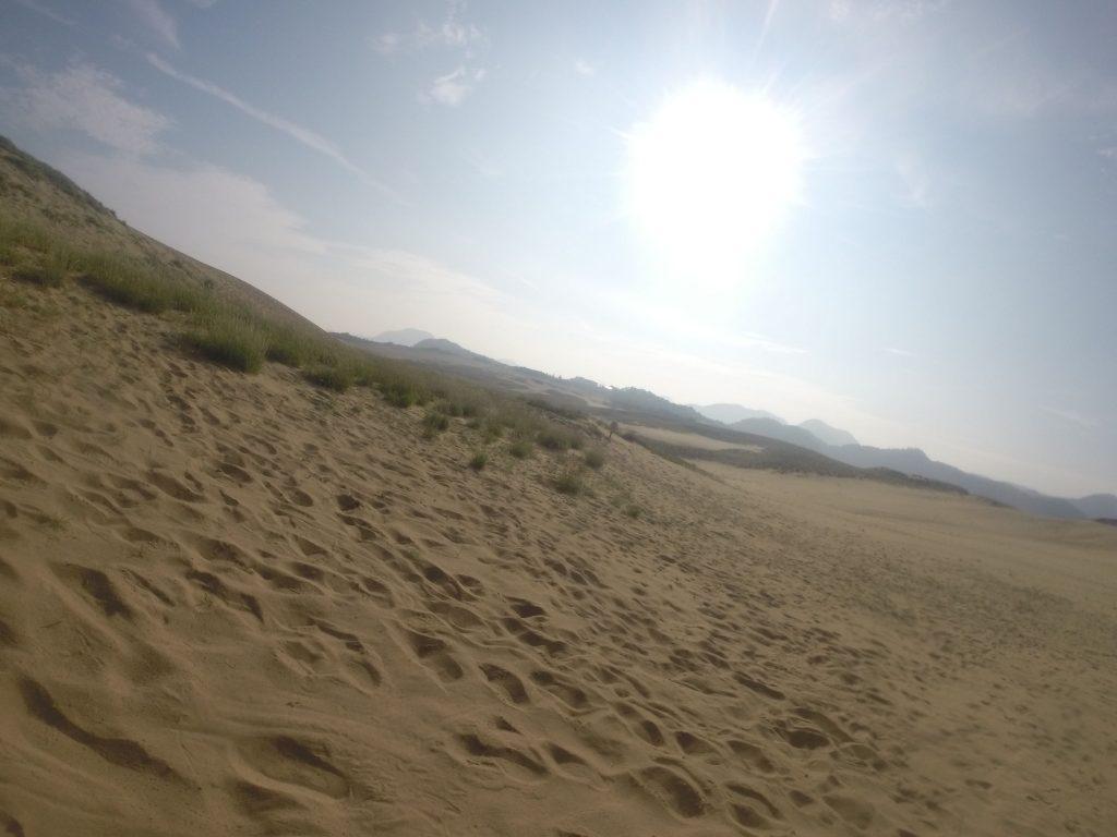 朝日が昇ったばかりの鳥取砂丘