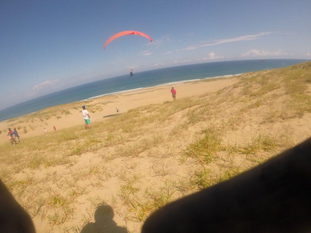 海に向かって大きく飛んでいきます。