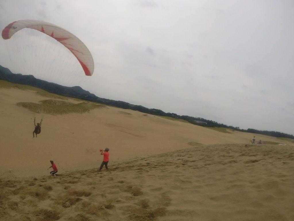 風に乗ってフワフワ飛んでいきます。