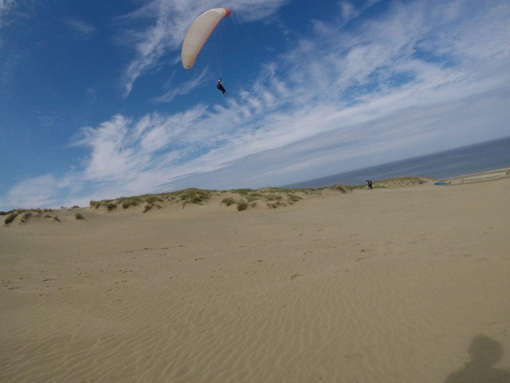 空を泳いでいるかの様な見事なフライト♪ 青い空を誰よりも近くで堪能してますね。