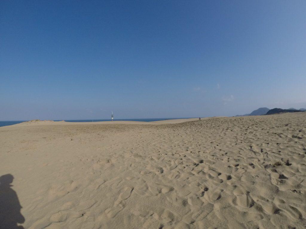 砂丘、今日も綺麗ですね~。